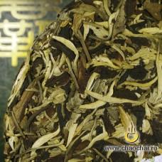 Юэ Гуан Бай, 357 г.