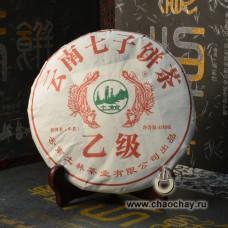 Ту Линь Шен 2015 год